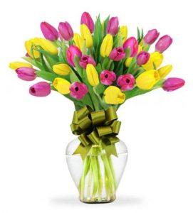 como conservar tulipanes