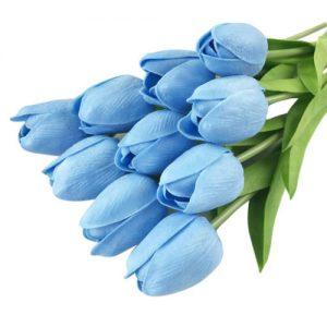 significado del color azul en un tulipan