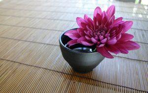 significado del crisantemo