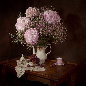 como cuidar una hortensia en maceta