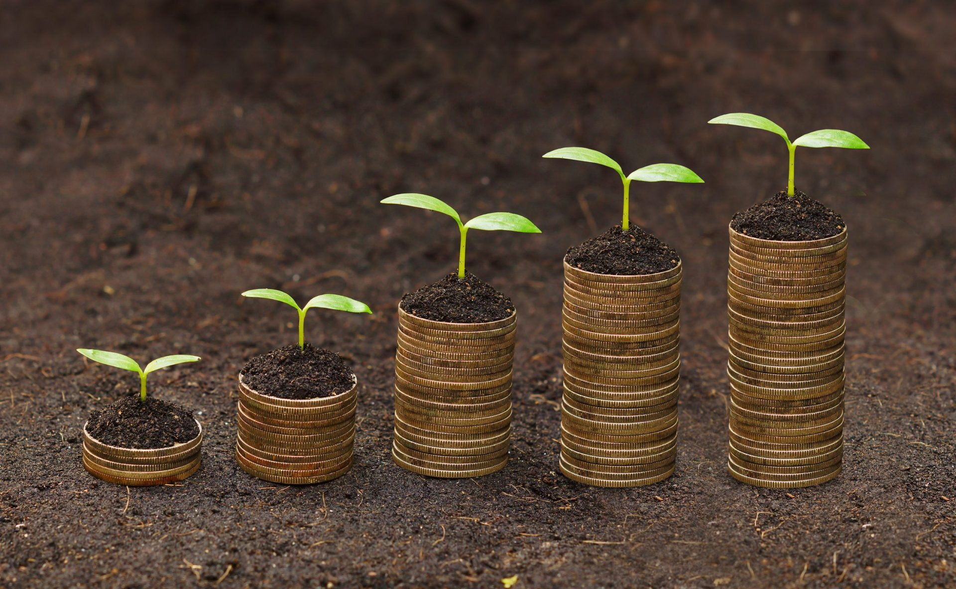 El crecimiento sostenible en Europa