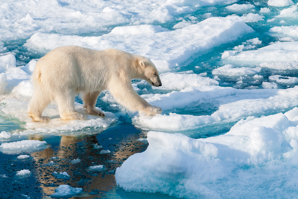 punto de no retorno cambio climático