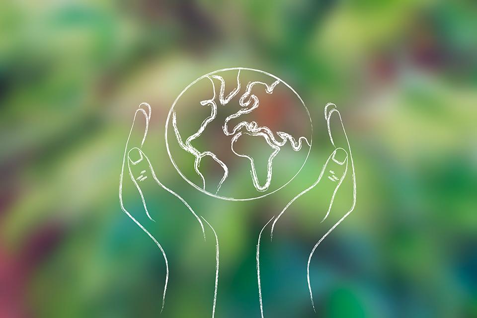 Organizaciones encargadas del cuidado del medio ambiente
