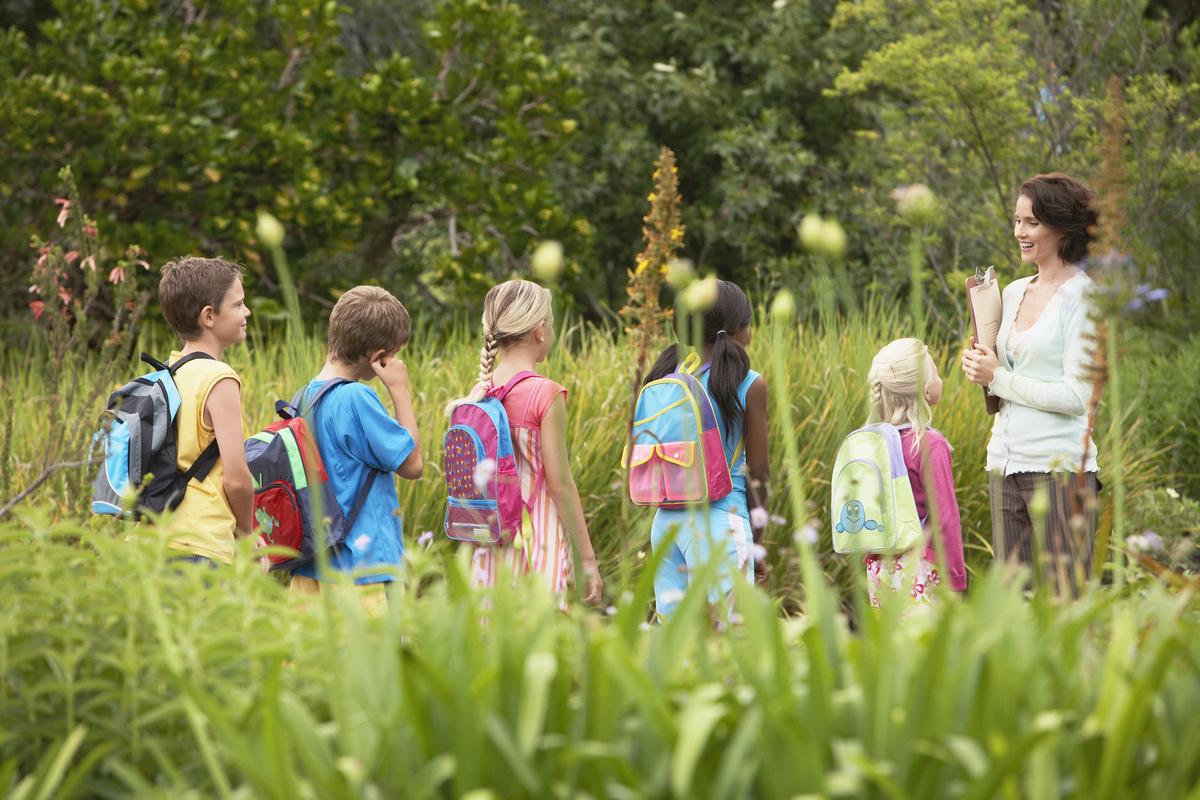 Educación ambiental para afrontar la crisis ecológica