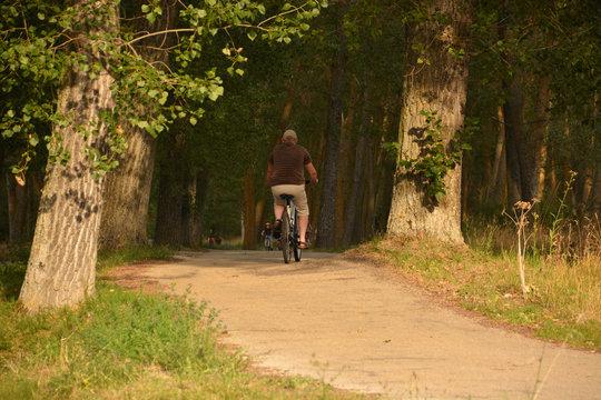 La movilidad sostenible en bicicleta