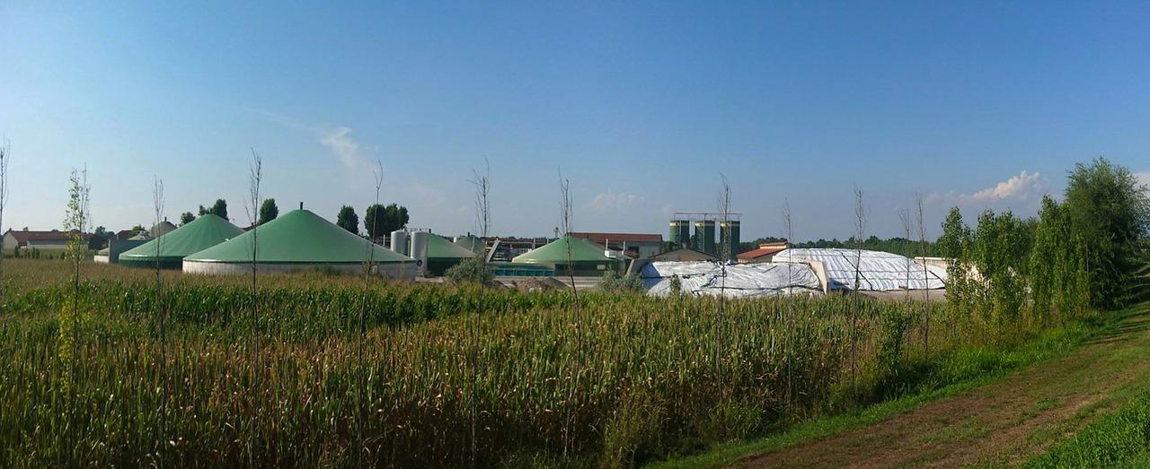 gas natural renovable