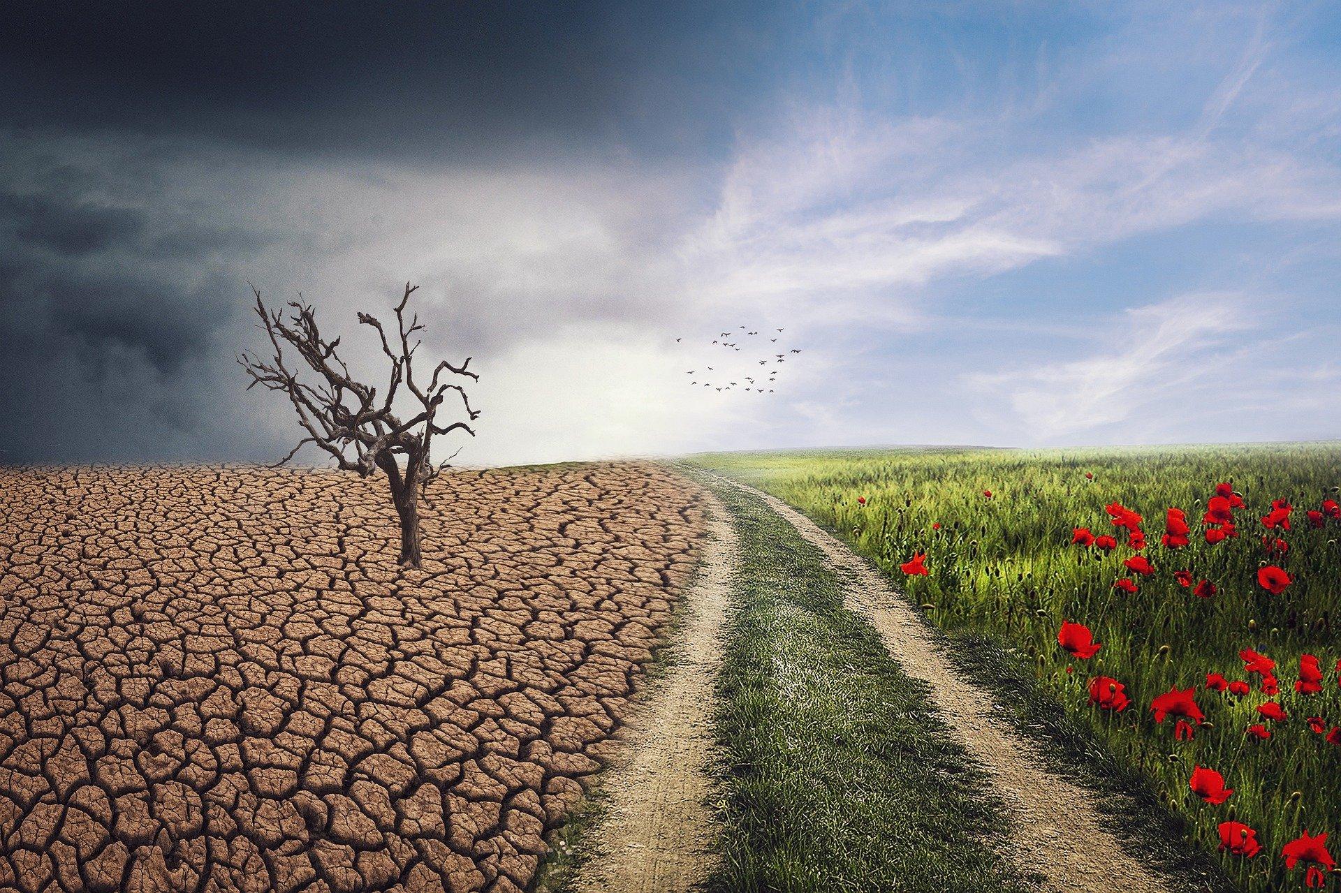 anteproyecto ley cambio climatico