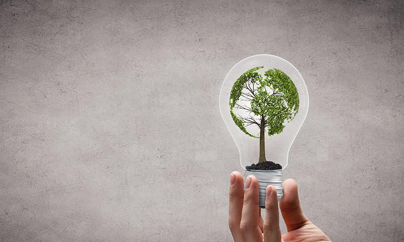 Proyectos nuevos e innovadores en la economía circular